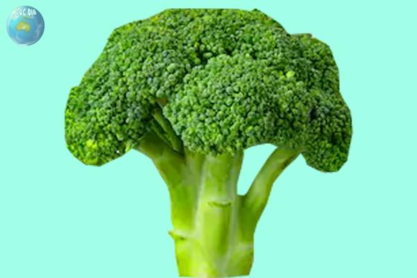 Dương vật to nhất thế giới nhờ Bông cải xanh
